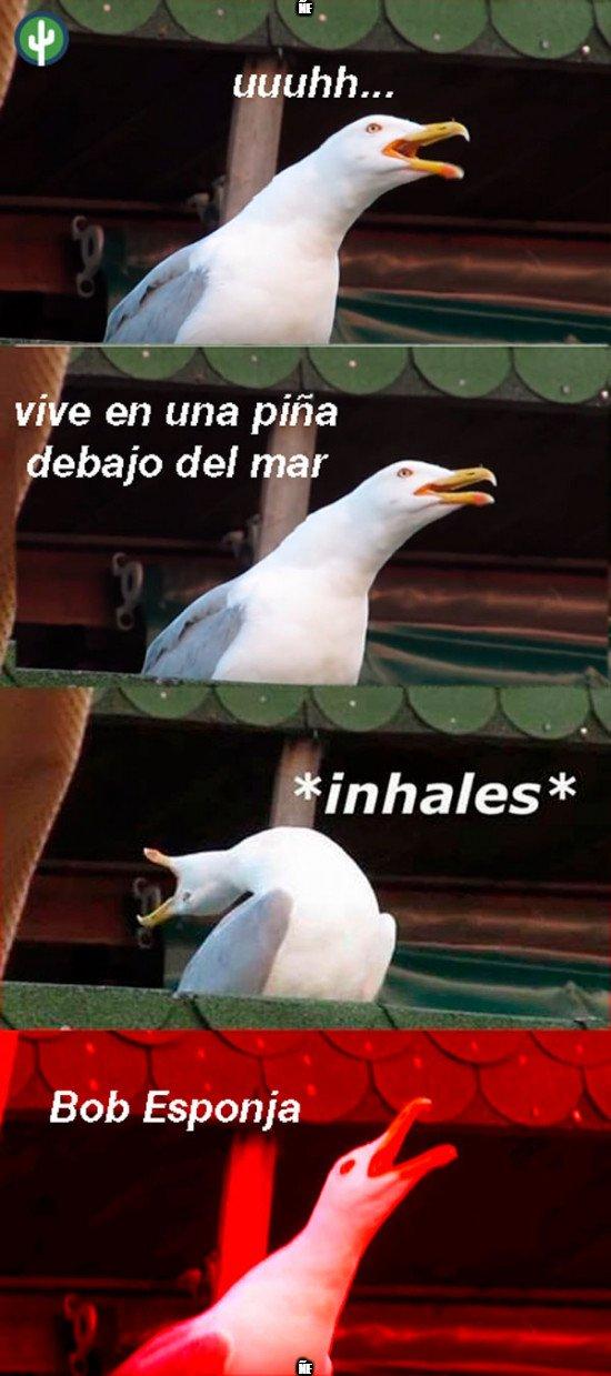 Meme_mix - BOB-ES-PON-JA