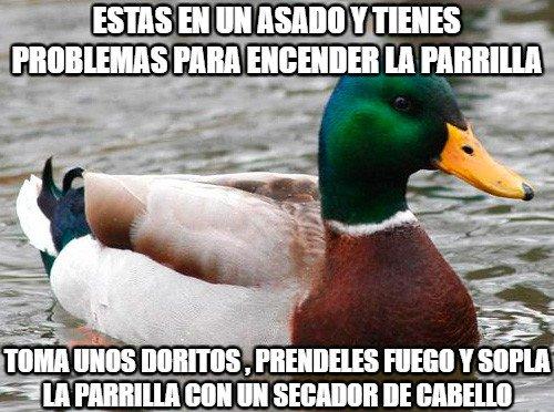 Pato_consejero - Encender la parrilla