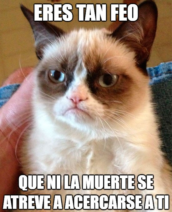 Grumpy_cat - Eso duele