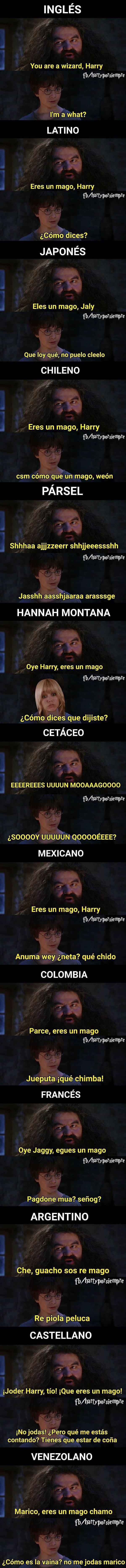 Meme_otros - La reacción de Harry Potter al descubrir que es un mago en diferentes idiomas