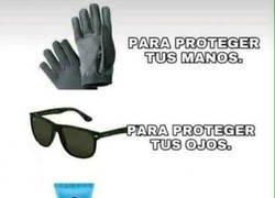 Enlace a La protección