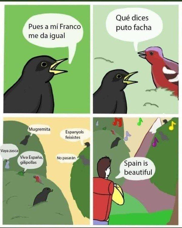 Meme_otros - Que bonito como cantan los pájaros