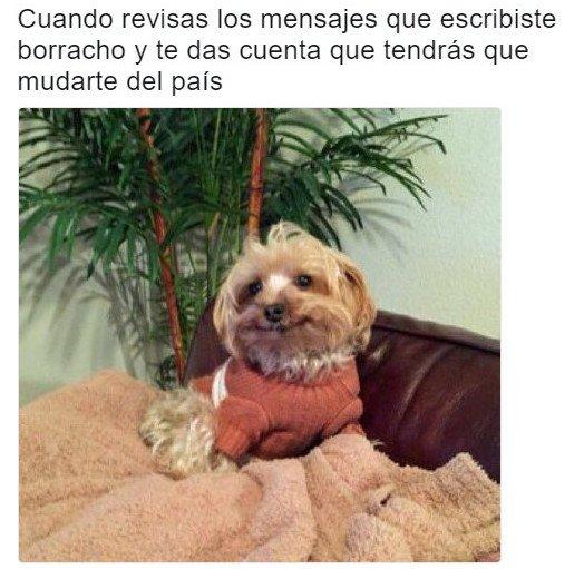 Meme_otros - La que lié es épica
