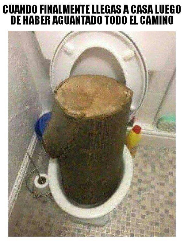 Meme_otros - Es un tronco que te quitas de encima...