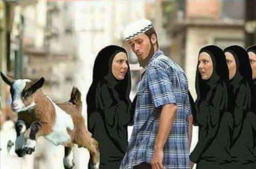 Meme_otros - Las preferencias de los musulmanes