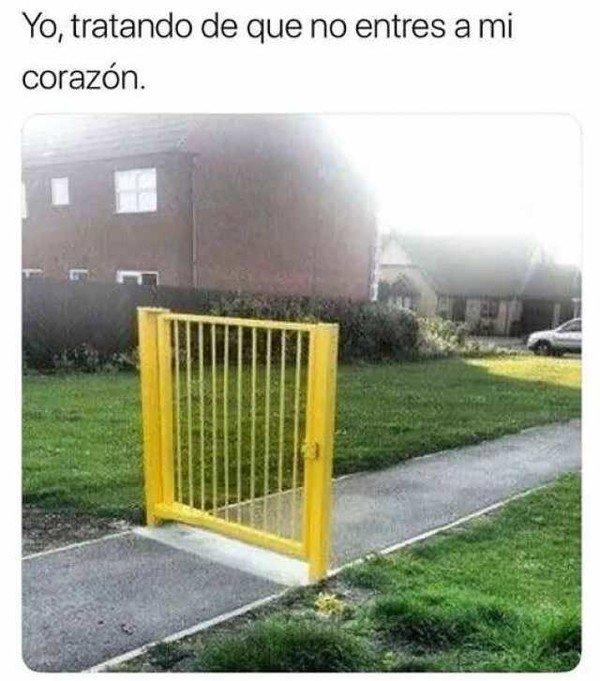 Meme_otros - El amor llamando a mi puerta
