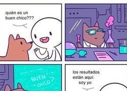 Enlace a El perro científico