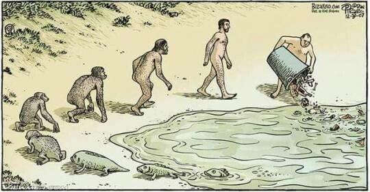 Otros - Tanta evolución para terminar así