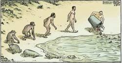 Enlace a Tanta evolución para terminar así