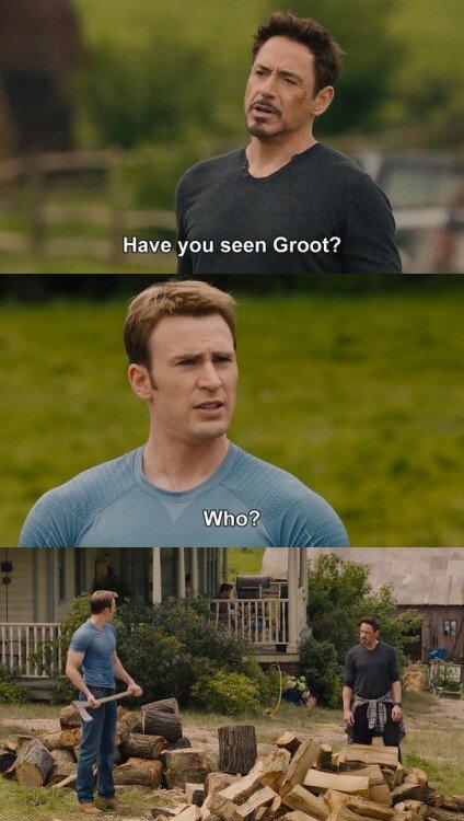 Meme_otros - ¿Has visto a Groot?