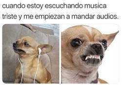 Enlace a Estás interrumpiendo mi espacio de música