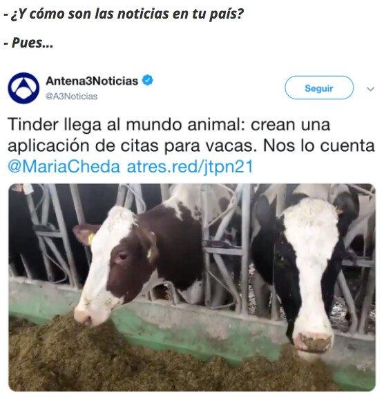 Meme_otros - Este es el nivel que hay en España ahora mismo