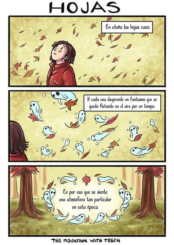 Otros - La magia que crean las hojas
