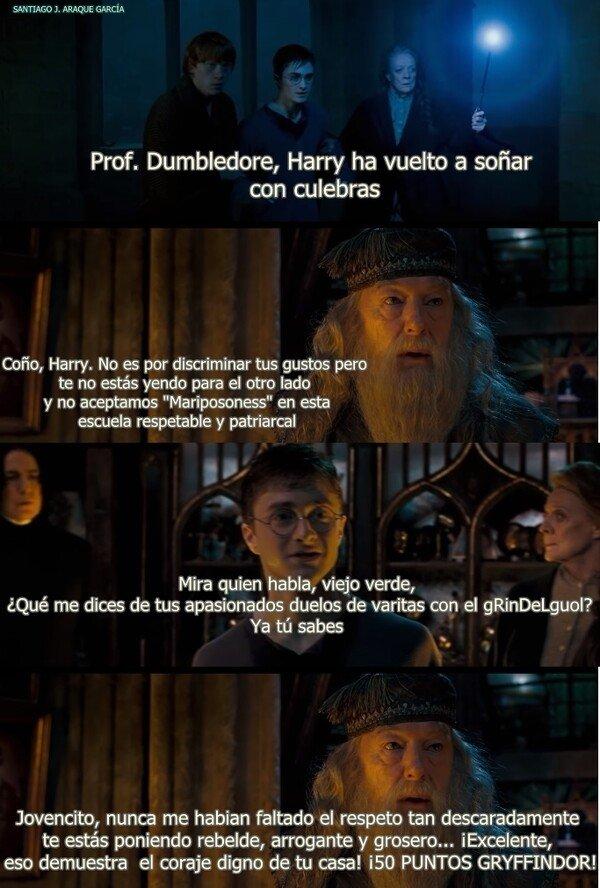 Meme_otros - Los oscuros secretos de Albus Dumbledore