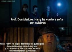 Enlace a Los oscuros secretos de Albus Dumbledore