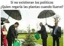 Enlace a Los salvadores de los políticos