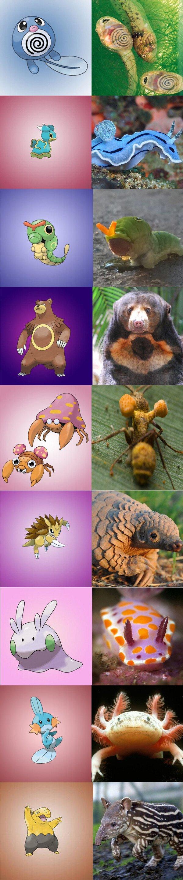 Meme_otros - ¿Quién dijo que los Pokémon no existían?