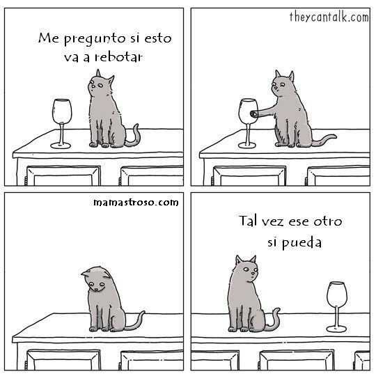 Otros - Los gatos y sus experimentos