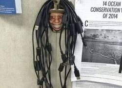 Enlace a El mejor recogedor de cables de la historia