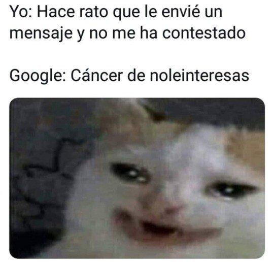 Meme_otros - ¿Qué clase de cancer es este, Google?