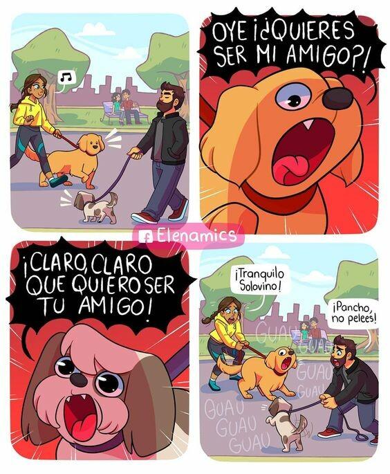 Otros - Comportamiento canino