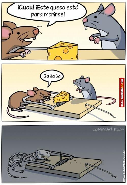 Otros - Mousetias Prats