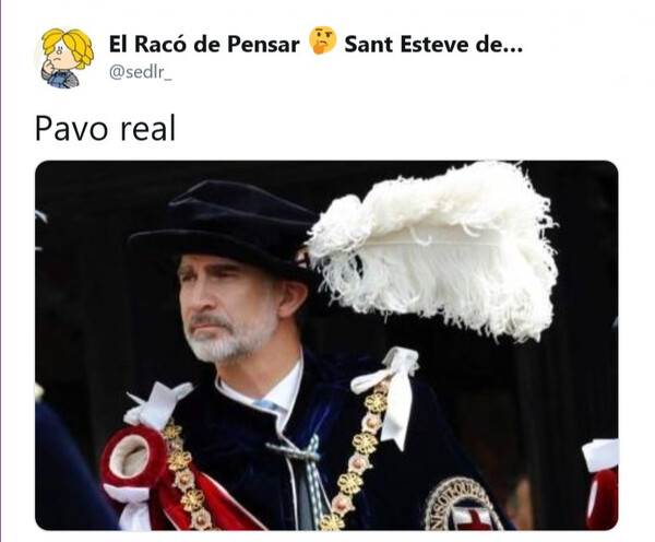 Meme_otros - El orgullo del pavo real es la gloria de Dios