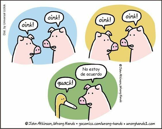 Otros - ¿Oink?
