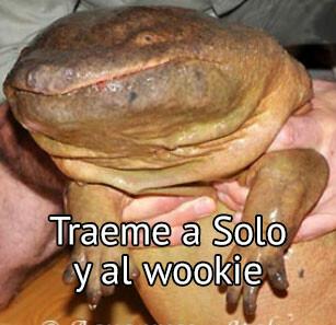 Meme_otros - Jabba the croc