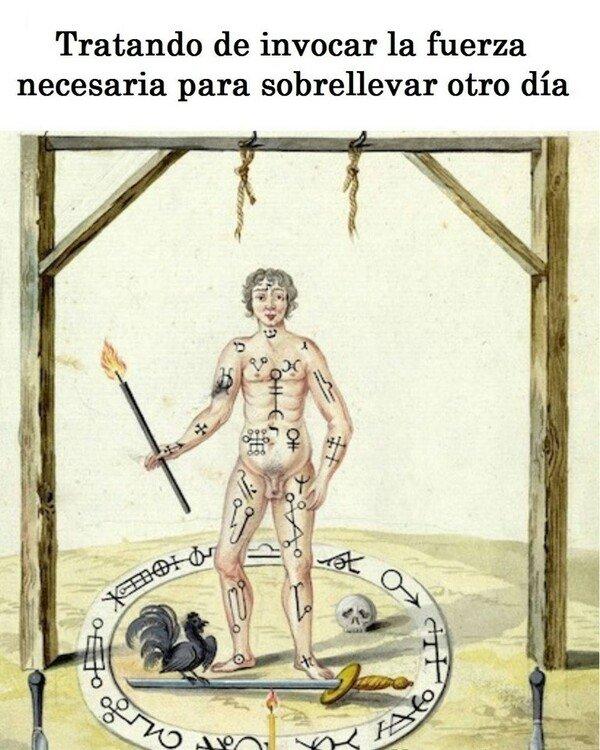 Meme_otros - Feliz lunes