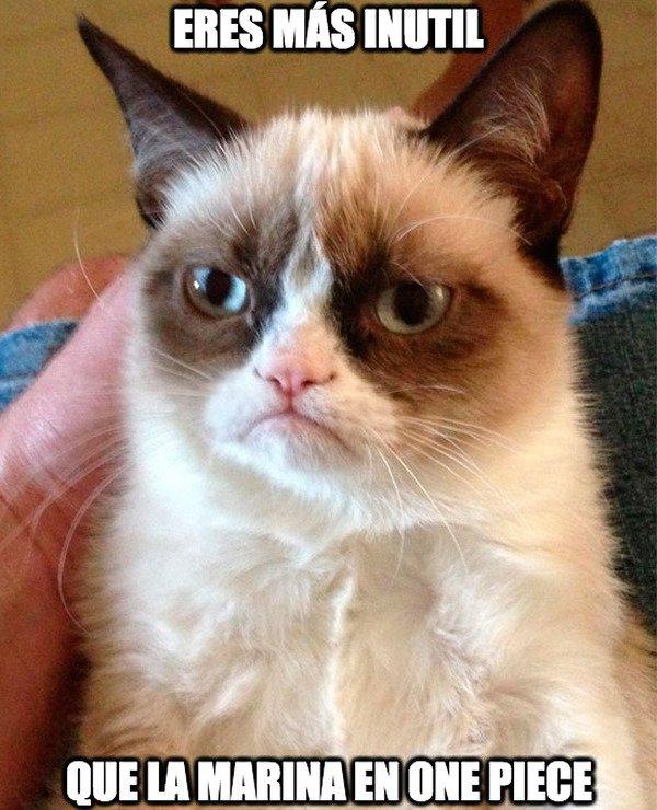 Grumpy_cat - Nada tan inútil como ellos