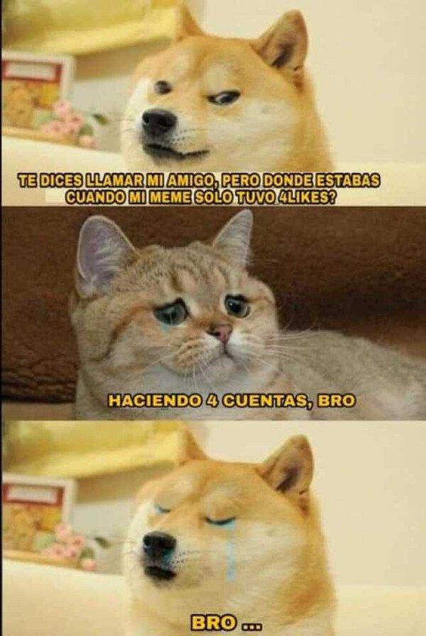 Meme_otros - Bro...