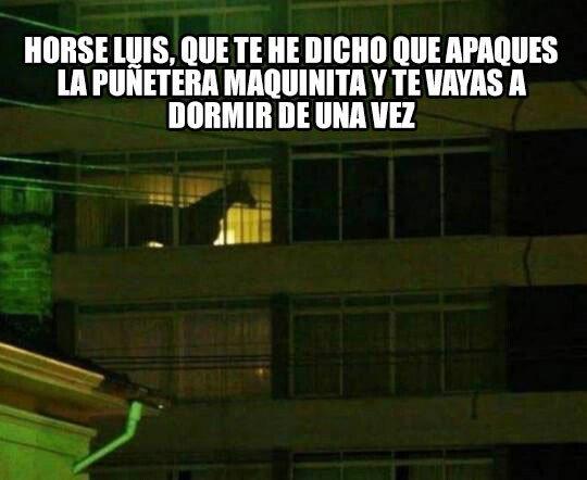 Meme_otros - Horse Luis está teniendo una adolescencia complicada