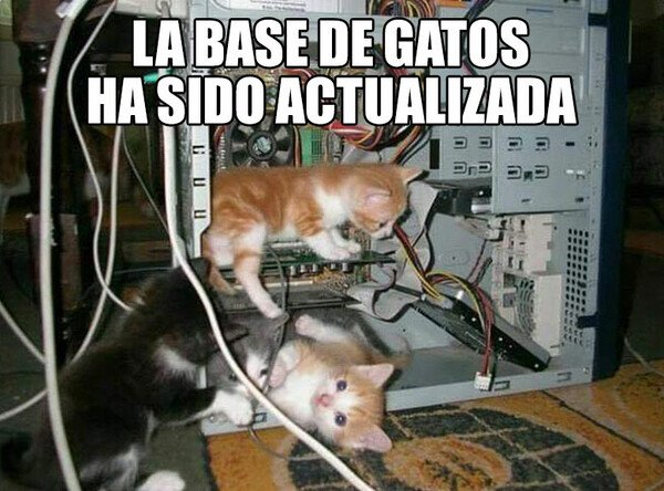Meme_otros - Sabes que lo has leído con el ritmillo del Avast