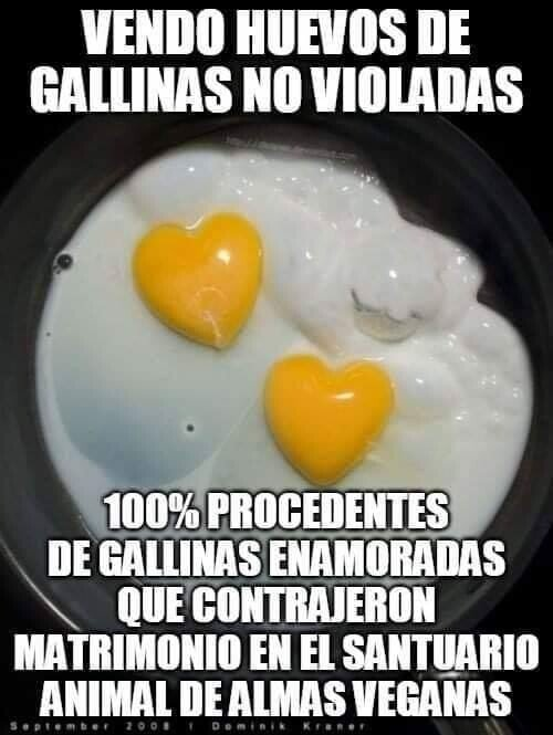 Meme_otros - Happy gallines