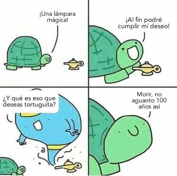 Otros - Deseos de tortuga