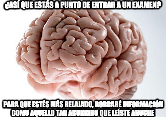 Cerebro_troll - Gracias cerebro, pero eso lo necesitaba