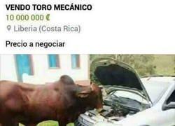 Enlace a Toro mecánico, literalmente