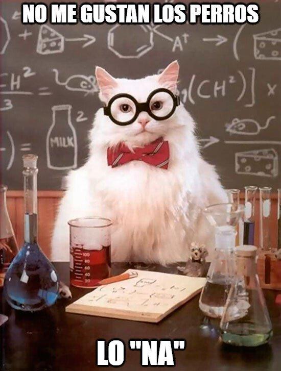 Gato_quimico - Cat-emático
