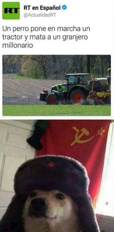 Otros - El temible perro comunista