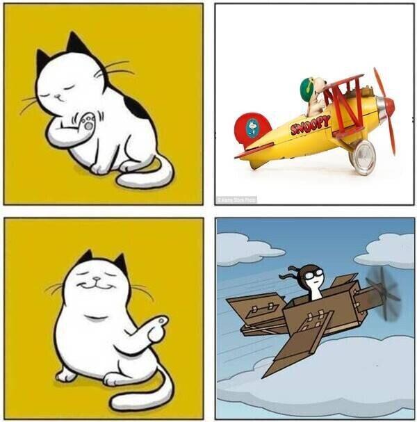 Meme_otros - Los gatos y las cajas de cartón. (spinoff meme otro usuario)