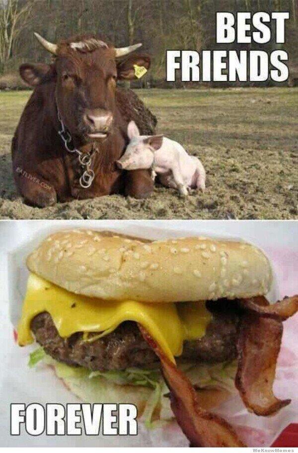 bacon,carne,cerdo,hamburguesa,queso,vaca