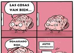 Enlace a Mi cerebro cuando todo va medianamente bien