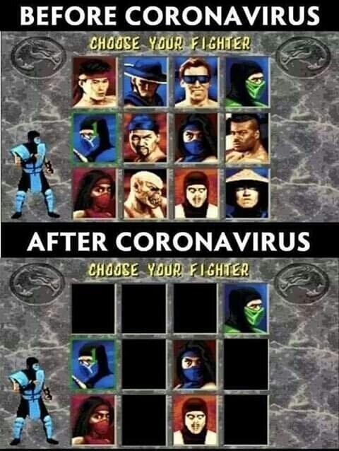 coronavirus,mascarilla,street fighter