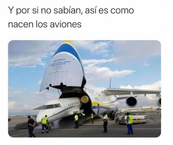 aeropuerto,aviones,bebé,nacer