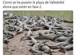 Enlace a Cómo está Valladolid...