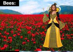 Enlace a La diferencia entre abejas y avispas