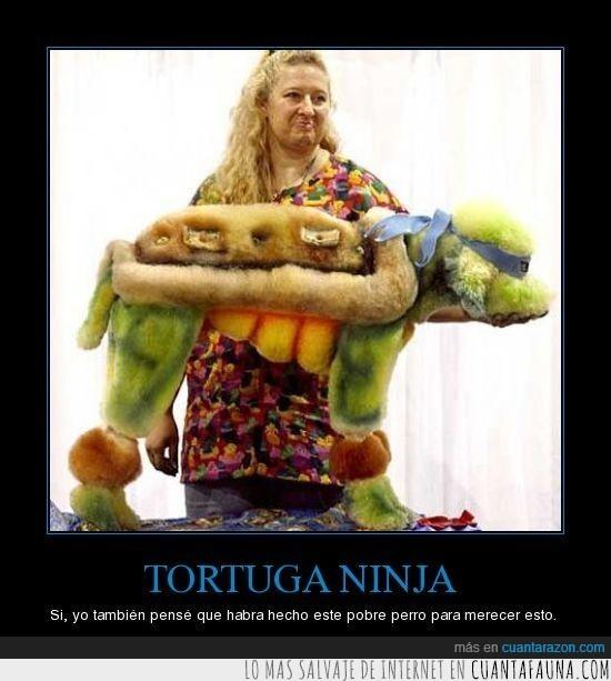perro,tortuga ninja