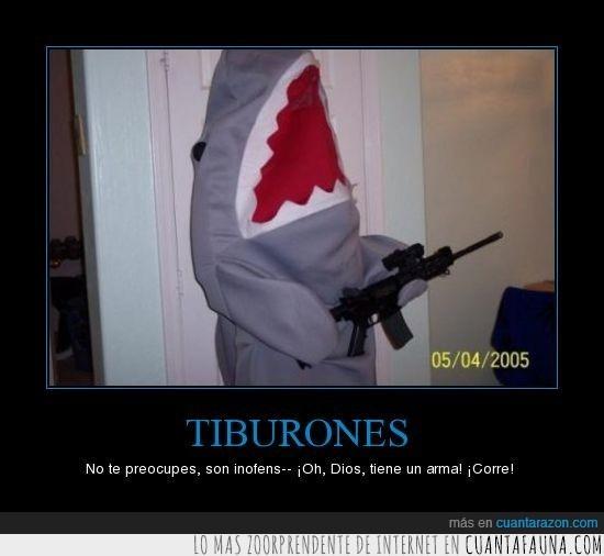arma,lol,tiburón