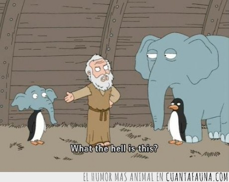 Arca,Elefante,Job,Noé,Pingüino
